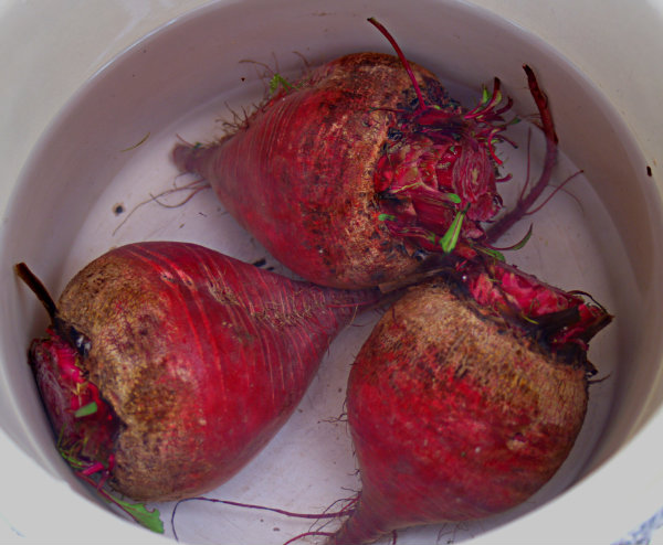 How To Boil The Beetroot