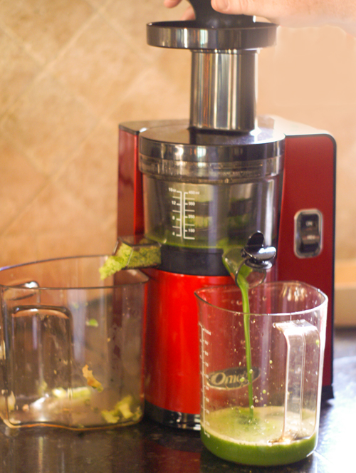 Vertical Omega VSJ843QR Juicer Review